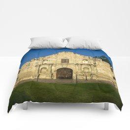 Empty Alamo Comforters