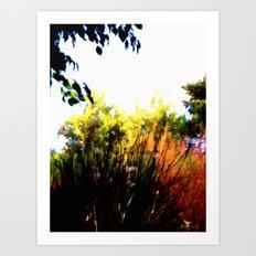 Backyard Hues Art Print