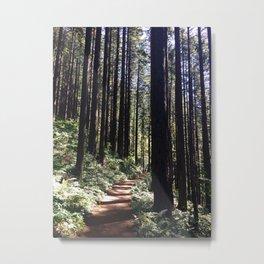Oregon Hike Metal Print
