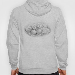 All life comes from an egg (W.Harvey) Hoody