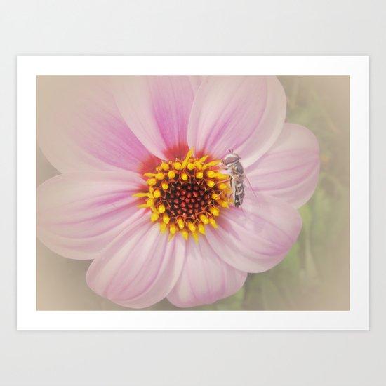 Vintage Flower Art Print