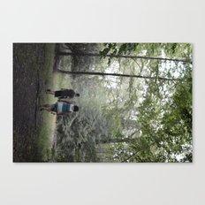 beach lake  Canvas Print