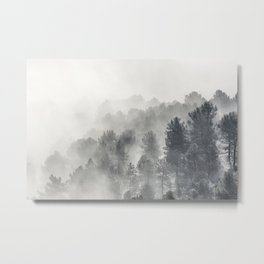 Yesterday.... Into the foogy woods Metal Print