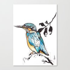 Kingfisher. Canvas Print
