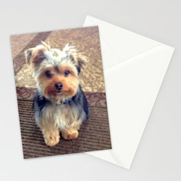 Always Thinking of You... | Yorkie | Dogs | Nadia Bonello Stationery Cards