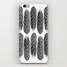 Black Stripe Feathers iPhone & iPod Skin