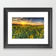 The April Field Framed Art Print