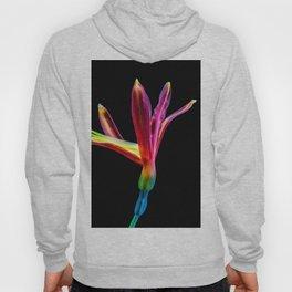 Flower bloom colorful Hoody