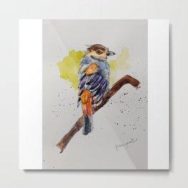 Silver-breasted Broadbill - in watercolor Metal Print