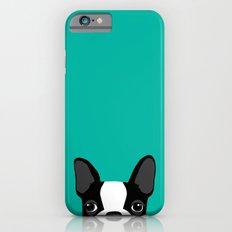 Boston Terrier Slim Case iPhone 6