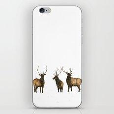Silent Snow iPhone & iPod Skin