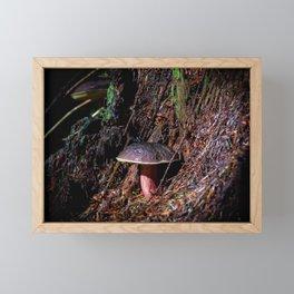 Step Into Fairyland Framed Mini Art Print