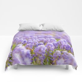Muscari Magic Comforters