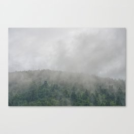 The Moody Days 4 Canvas Print