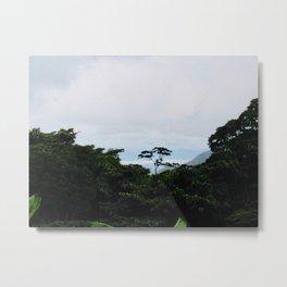 Cloud Forest of Monteverde Metal Print
