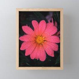 Pink Flower Framed Mini Art Print