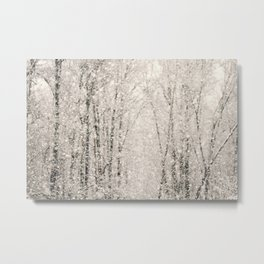 The White Stuff Metal Print