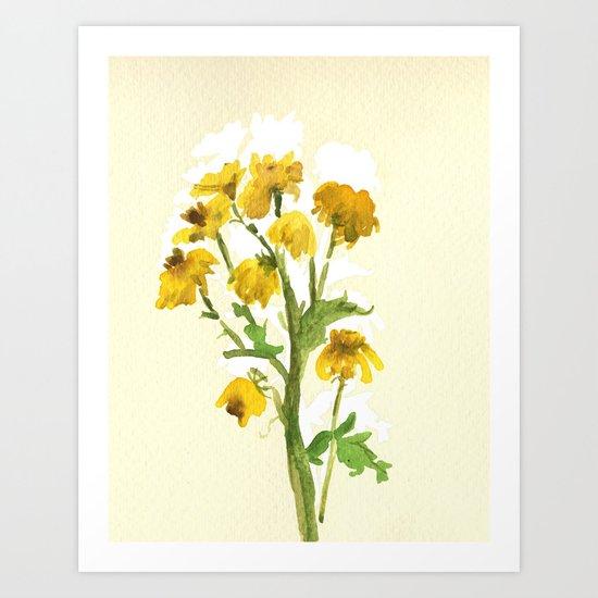 Chrysanthemum 2 Art Print