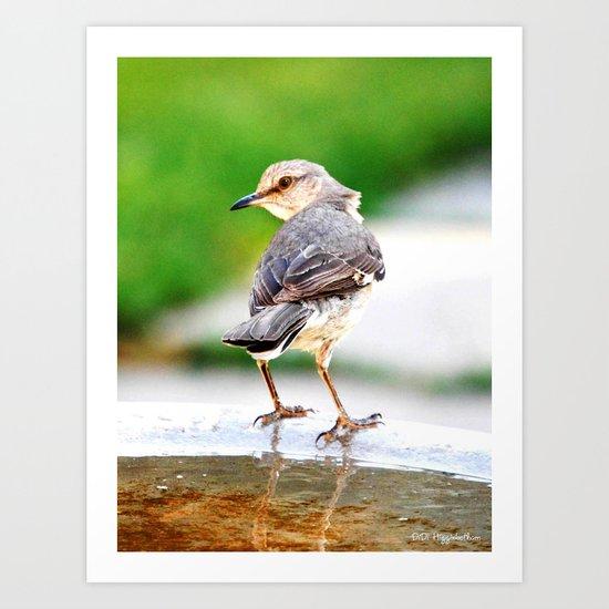 Bird Legs Art Print
