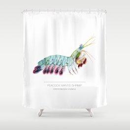 Peacock Mantis Shrimp Shower Curtain