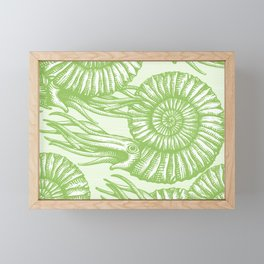 AMMONITE COLLECTION GREEN Framed Mini Art Print