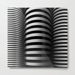 Toruses Metal Print