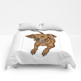 Maxwell the dog Comforters