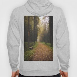 Autumn path and bench Hoody