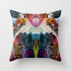 2011-10-21 12_11_34 Throw Pillow