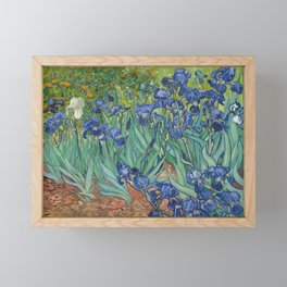 Vincent van Gogh - Irises Framed Mini Art Print