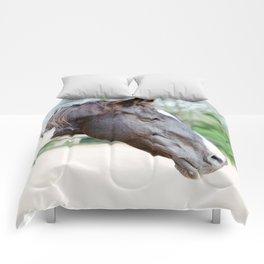Delicate Decco Comforters