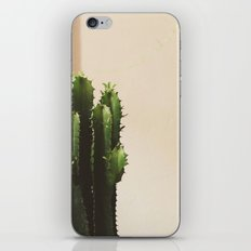 Cactus & Friend iPhone & iPod Skin