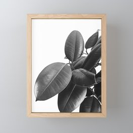 Ficus Elastica #23 #BlackAndWhite #foliage #decor #art #society6 Framed Mini Art Print