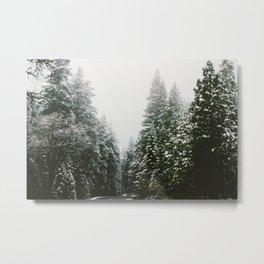 The Narrows Metal Print