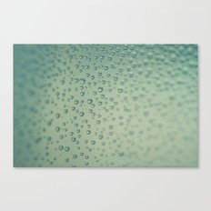 Water Droplets Obsession  Canvas Print