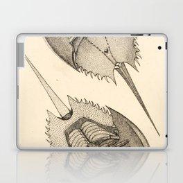 Horseshoe Crabs Laptop & iPad Skin