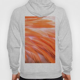 You Are What You Eat Flamingo Feathers Hoody