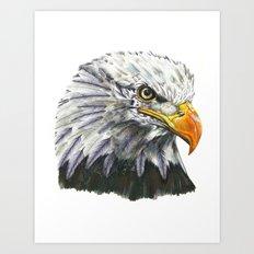 Bald Eagle! Art Print