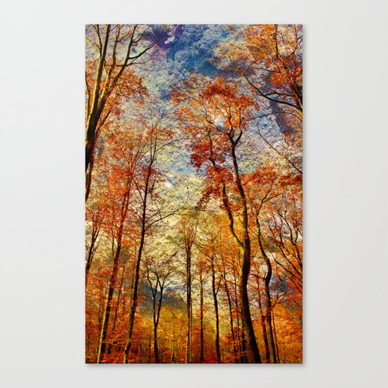 Dreamwood Canvas Print