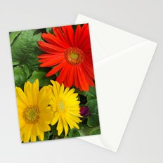 Colorful Daisies Stationery Cards