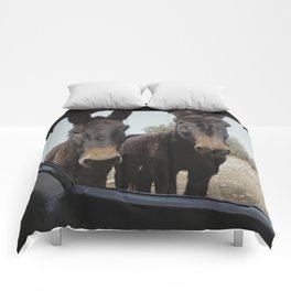 """""""Two donkeys at the mountains"""""""" Comforters"""
