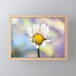 Rainbow daisy Framed Mini Art Print