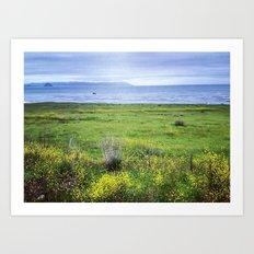 cayucos, california Art Print