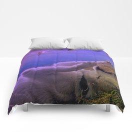 Siberian Husky Digit. Edition Comforters