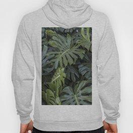 Green tropical plants Hoody
