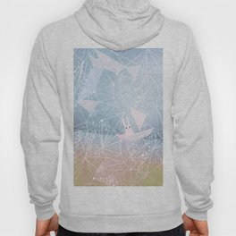 sailing through the light Hoody