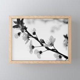 Black And White Blossoms Framed Mini Art Print