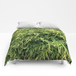 Combed Greens Comforters