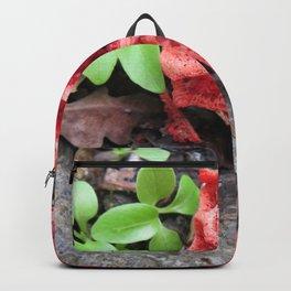 Red mushroom Backpack
