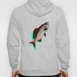 fish + fish + fish Hoody